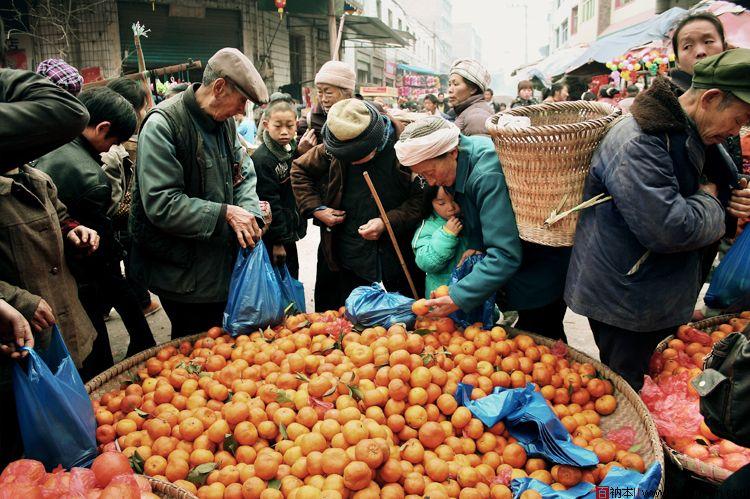 重庆市社会工作助力乡村振兴扎实推进